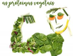 SOBRE AS PROTEÍNAS VEGETAIS